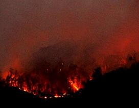 Gần ngàn người dập đám cháy rừng kéo dài suốt 4 ngày