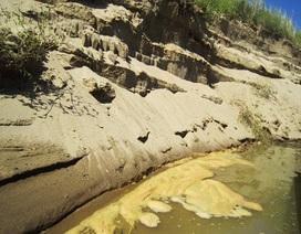 Canh cánh nỗi lo sạt lở hai bên bờ sông Lam