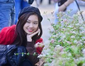 Bạn trẻ háo hức chụp ảnh với hoa tam giác mạch lần đầu khoe sắc ở Hà Nội