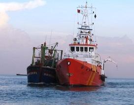 Tàu cá Bình Định bị tàu nước ngoài đâm chìm, 8 ngư dân thoát nạn