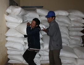 """Chính phủ """"phân bổ"""" 700 tấn gạo hỗ trợ cứu đói mùa giáp hạt"""