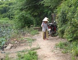 Bình Định: Người đô thị mòn mỏi đợi đường bê tông