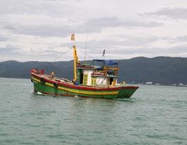 Tàu tức tốc vào đảo cứu ngư dân bị đứt gần lìa bàn chân