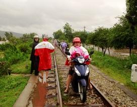 Bình Định: Nhiều trường cho học sinh nghỉ học tránh lũ