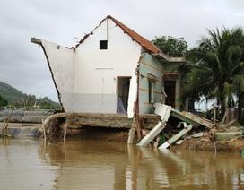 Bình Định: Không bắn pháo hoa Tết, dành tiền lo cho dân vùng lũ