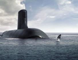 Pháp thắng thầu đóng tàu ngầm trị giá 39 tỷ USD cho Úc