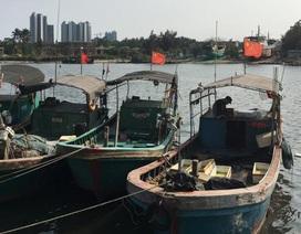 """Trung Quốc huấn luyện ngư dân thành """"dân quân"""" trên Biển Đông"""
