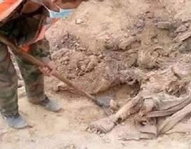 Phát hiện hố chôn tập thể 150 người ở thành cổ Palmyra