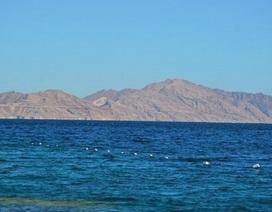 Tòa Ai Cập bác quyết định giao hai đảo cho Ả rập Xê út