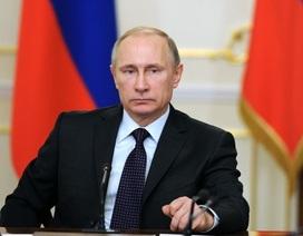 Tổng thống Putin: Nga chưa bao giờ can thiệp vào cuộc trưng cầu dân ý ở Anh