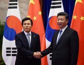 Chủ tịch Trung Quốc hối thúc Hàn Quốc thận trọng về hệ thống tên lửa THAAD