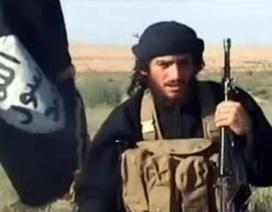 Không quân Nga hay Mỹ tiêu diệt phát ngôn viên sừng sỏ của IS?