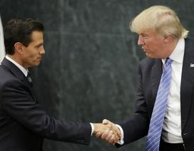 Cuộc gặp đặc biệt giữa tỷ phú Trump và tổng thống từng ví ông với Hitler