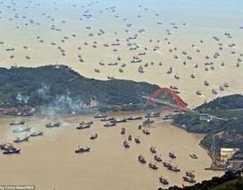 """Trung Quốc """"vắt kiệt"""" nguồn cá ở ngư trường Biển Đông"""