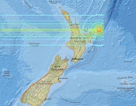 New Zealand: Cảnh báo sóng thần sau động đất mạnh nhất 20 năm
