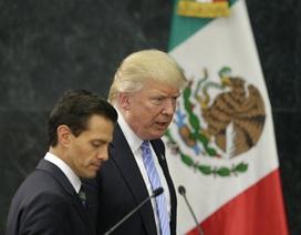 Nghị sĩ Mexico tính đòi lại đất đã cho Mỹ nếu ông Trump đắc cử