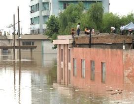 Triều Tiên hứng lũ lụt lịch sử, ít nhất 133 người chết