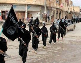 Lầu Năm Góc: Liên quân quốc tế tiêu diệt bộ trưởng thông tin của IS