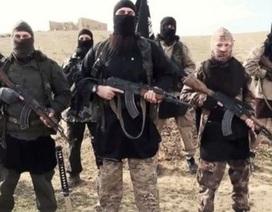 IS bán nội tạng chiến binh tử trận để bù tiền thâm hụt
