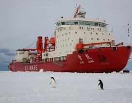 Mỹ lo ngại về hoạt động của Trung Quốc ở Bắc Cực