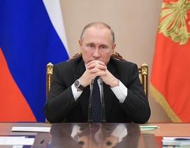 Tổng thống Putin hoãn họp báo thường niên để dự lễ tang Đại sứ bị sát hại
