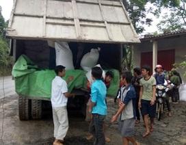 Quảng Bình: Hỗ trợ gần 300 tấn gạo cho học sinh nghèo
