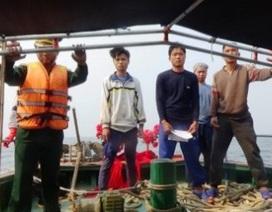 Đuổi 6 tàu Trung Quốc đánh bắt cá trái phép trong vùng biển Việt Nam