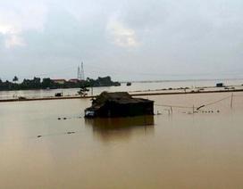 Mưa lớn kéo dài, nhiều nơi ở Quảng Bình đang chìm trong nước lũ