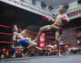 Trẻ em Thái Lan vật vã mưu sinh trên võ đài khốc liệt