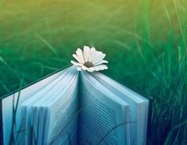 Đọc sách văn học giúp chúng ta thông minh hơn?