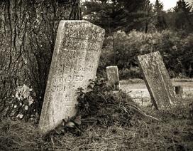 """Ngôi mộ 6.000 năm tuổi bị di dời vì nhầm là """"đống đá vụn"""""""