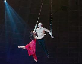 Khán giả kinh hoàng chứng kiến nghệ sĩ xiếc nhào lộn rơi từ độ cao 10m
