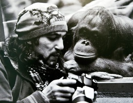 Tại sao nhiếp ảnh gia là một trong những nghề tuyệt vời nhất?