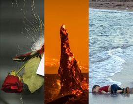 Những hình ảnh kể câu chuyện về thế giới trong năm 2015 (II)