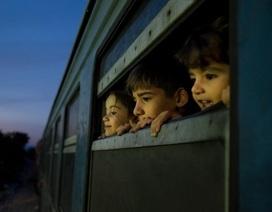 Bộ ảnh kể về số phận của trẻ em di cư, tị nạn sau 70 năm