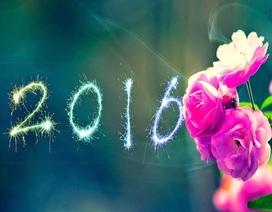 20 câu thoại hay nhất cho ngày đầu năm mới 2016