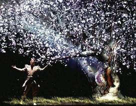 Giọng ca opera thiên thần và ảo thuật phong cách Nhật gây sốt