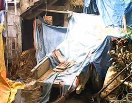 Một người chết cháy trong căn nhà chứa rơm