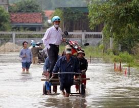 Đường ngập sâu, dịch vụ kéo xe, chở đồ đắt khách