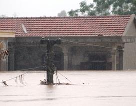 Ít nhất 12 người chết và mất tích sau bão số 10