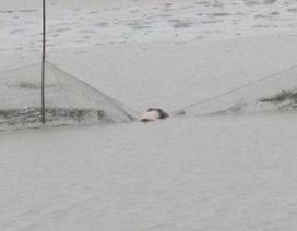 Phát hiện thi thể nam giới trôi trên sông Lam