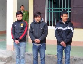 Sinh viên vận chuyển pháo bị bắt giữ