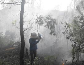 Hàng trăm người dân đội nắng dập rừng thông cháy