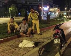 """Hà Nội: Bắt quả tang đối tượng trộm chó cùng bộ """"đạo cụ"""""""