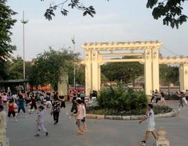 Hà Nội sắp chặt hạ, di chuyển 42 cây xanh thuộc Công viên Thống Nhất