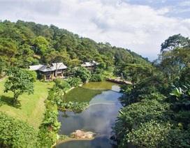 Đình chỉ resort trái phép tại Vườn quốc gia Ba Vì