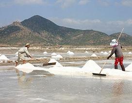 Bộ Nông nghiệp khẳng định sản phẩm muối vẫn an toàn