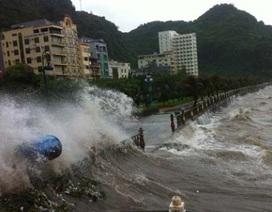 Đêm nay bão vào Quảng Ninh - Nam Định
