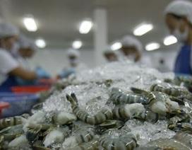 Tôm Việt đang hướng đến thị trường 7 tỷ người ăn