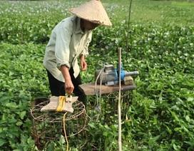 """Nghề bán nước sông Đà ở """"làng khát"""""""